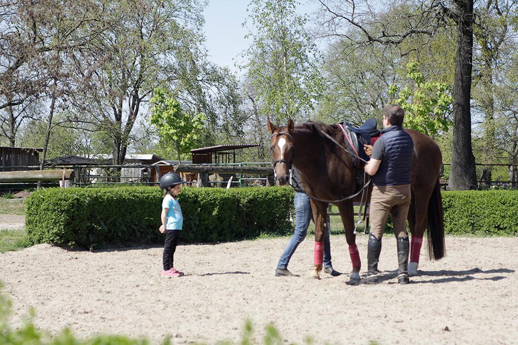 Maiglück, Pferd, reiten